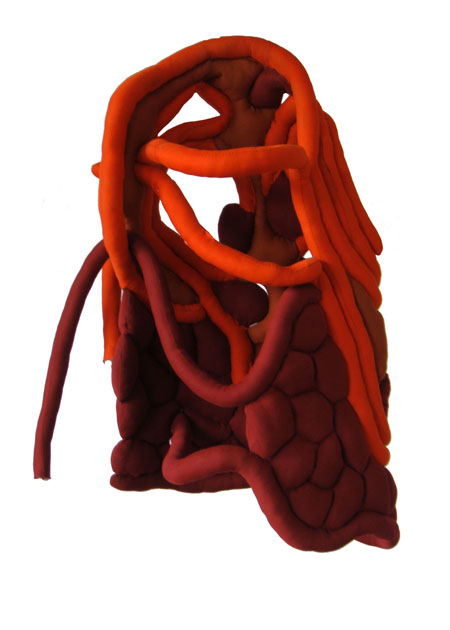 http://wedz.free.fr/sophiehallier/files/gimgs/8_colone-vertebrale-zoom.jpg